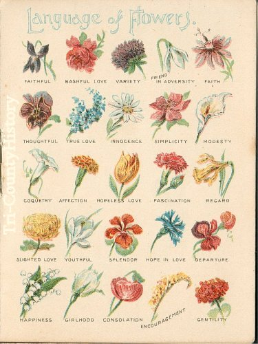 language of flowers  sacred wicca, Natural flower